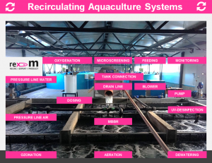 rex-m-ras-recirculating-aquaculture-system-process-technology-drumfilter-oxygenation-aeration-uv-disinfection-ozonation-pump-habitat-mbbr-biofilter