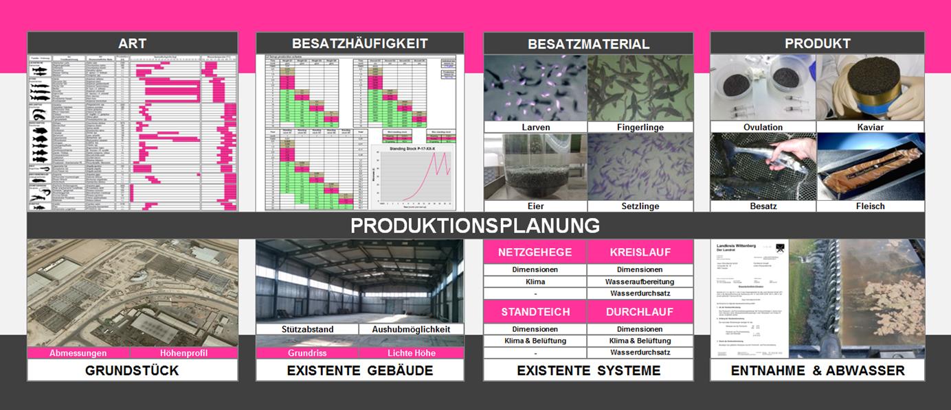 REX-M Produktionsplanung Aquakultur Kreislaufanlage RAS Arten Produkt Gebäude Grundstück Brunnen Abwasser Einleitbedingungen wasserrechtliche Genehmigung Besatz