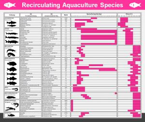REX-M Recirculating Aquaculture Species Fisch Wels Barsch Zander Flusskrebs Garnele Tilapia Aquakultur Stör RAS Kreislaufanlage
